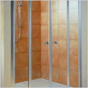 Saloon Shower Door